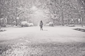 snow-love-lyra