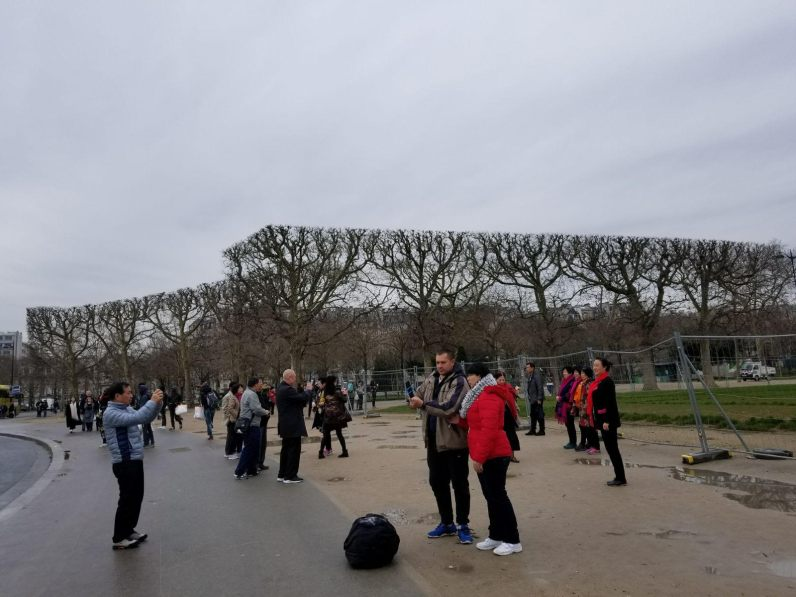 All the trees near special structures in Paris are cut like this...